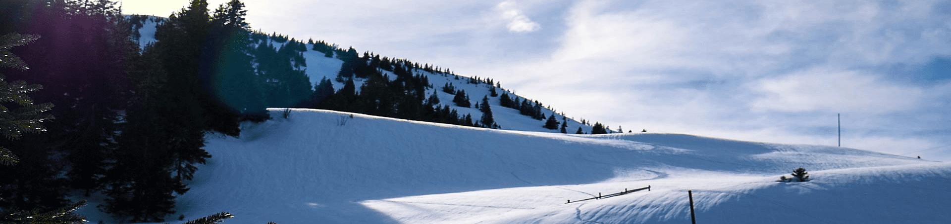 Eine Hügelige Schneelandschaft in der Schweiz