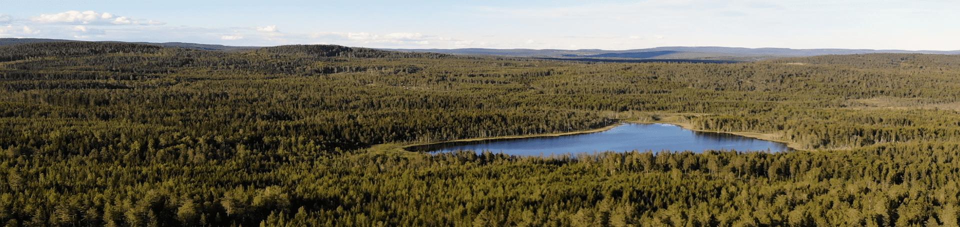 Eine Luftaufnahme von der Waldlandschaft in Schweden