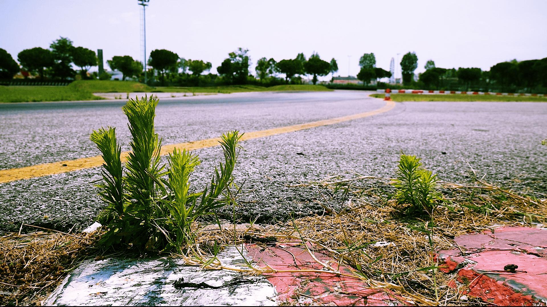 Ein Streckenabschnitt von der Rennstrecke in Jesolo