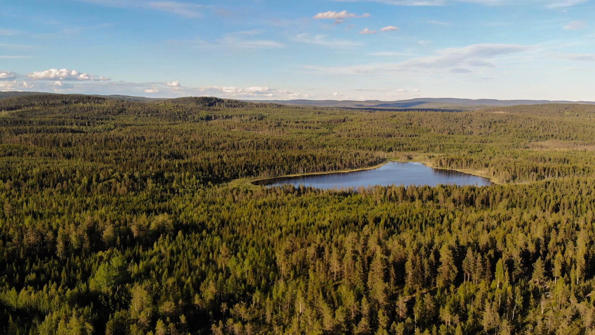 Ein Drohnenaufnahme über die Schwedische Naturlandschaft mit einem See zu sehen